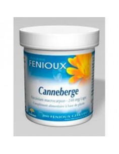Canneberge Cranberry 240mg. 200cap. - FENIOUX
