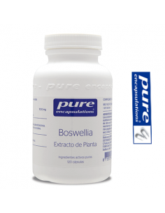 Boswellia Serrata - Pure Encapsulations